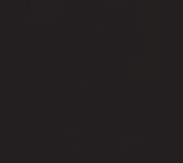 Digital Enterprise Formula Logo
